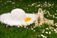 De tuin van de de weidepicknick van de bloem royalty-vrije stock foto