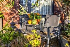 De tuin van de herfst Een kar met een stapel van gevallen bladeren Royalty-vrije Stock Afbeeldingen