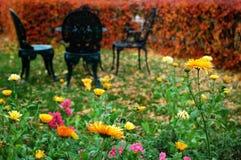 De tuin van de herfst in rutherfordhuis stock foto's