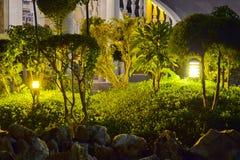 De tuin van de nacht. royalty-vrije stock fotografie