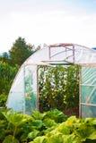 de tuin van de serreweide Royalty-vrije Stock Afbeelding