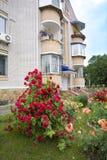 De tuin van de stad Royalty-vrije Stock Afbeelding