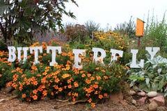 De tuin van de vlinder Stock Foto's