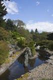 De tuin van de Zenstijl Stock Foto's