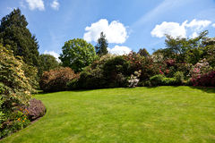 De tuin van de zomer Stock Afbeelding