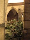 De tuin van Duitsland Stock Afbeeldingen