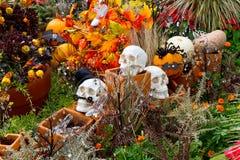 De Tuin van Halloween Royalty-vrije Stock Afbeeldingen