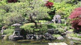 De tuin van Hasedera stock video