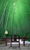 De tuin van het bamboe Stock Afbeeldingen