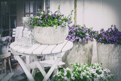 De tuin van het de lentehuis Stock Foto's