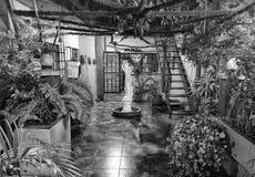 De tuin van het huis Royalty-vrije Stock Afbeeldingen