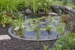 De tuin van het plattelandshuisje met vijver Stock Afbeeldingen