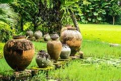 De tuin van het water stock fotografie