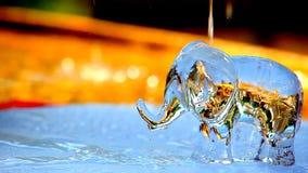 De tuin van het waterdalingen van de glazenolifant stock footage