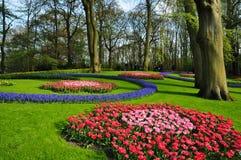 De tuin van Keukenhof De tuinen van de werelden grootste die bloem, in Lisse, Nederland worden gesitueerd royalty-vrije stock fotografie