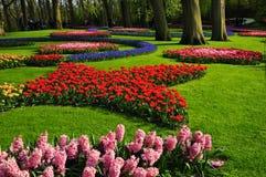 De tuin van Keukenhof De tuinen van de werelden grootste die bloem, in Lisse, Nederland worden gesitueerd Stock Foto