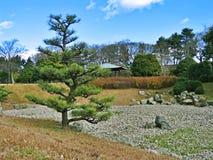 De Tuin van Ninomaru van het oosten stock foto's