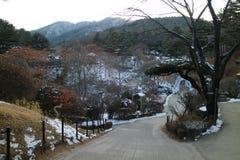 De Tuin van Ochtendrust, het Festival van de de Winterverlichting, Seoel Royalty-vrije Stock Foto