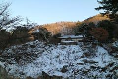 De Tuin van Ochtendrust, het Festival van de de Winterverlichting, Seoel Stock Foto's