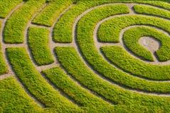 De tuin van Ornemental Stock Afbeeldingen