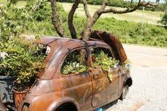 De tuin van oud Fiat 500 Royalty-vrije Stock Afbeelding