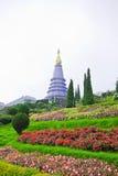 De tuin van in-Ta-niet park, Thailand Stock Foto's