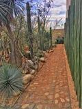 De tuin van Vivesverde Xoxoctlán, Oaxaca, Mexico royalty-vrije stock foto