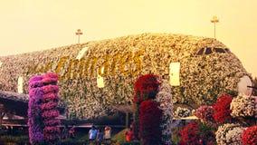 De tuin van de wereld` s grootste natuurlijke bloem Structuur die de vorm van de Luchtbus A380 vormen Stock Afbeeldingen