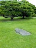 De tuin van Zen stock afbeeldingen