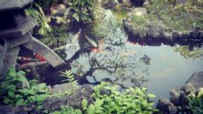 De tuin van Zen in Japan Stock Foto