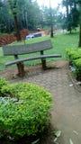 de tuin in yaoundé die door een rivier kruisen Royalty-vrije Stock Afbeeldingen
