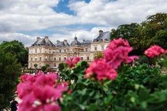De Tuinen en het Paleis van Luxemburg in Parijs Royalty-vrije Stock Foto