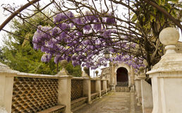 De Tuinen van de villa d'Este royalty-vrije stock afbeelding