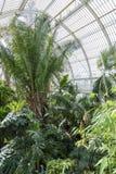 De Tuinen van Kew van het palmhuis royalty-vrije stock afbeelding
