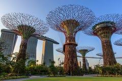 De Tuinen van Modernd door de baai Royalty-vrije Stock Afbeeldingen