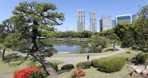 De Tuinen van Tokyo Hamarikyu Stock Foto's