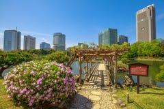 De Tuinen van Tokyo Hamarikyu Royalty-vrije Stock Fotografie