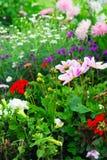 De tuinen van Versailles Stock Afbeeldingen