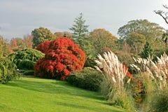 De tuinen van Wakehurst in theuk stock fotografie
