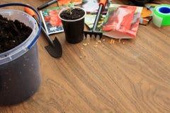 De tuinhulpmiddelen, de sachets groentezaden, de emmer grond en de spruit in container zijn op lijst De ruimte van het exemplaar Royalty-vrije Stock Afbeeldingen