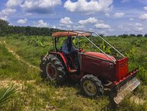 De tuinman drijft een handkar om het gebied van de olie aan te passen royalty-vrije stock fotografie