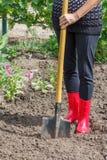 De tuinman graaft grond op een bed De vrouwelijke landbouwer graaft in garde stock foto's