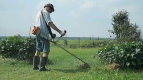 De tuinman snijdt het gras gebruikend een grasmaaier stock videobeelden