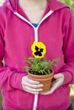 De Tuinman van het viooltje Stock Foto's
