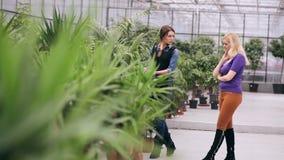 De tuinman verklaart aan het jonge meisje over installaties stock video