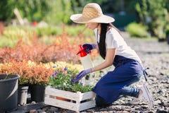 De tuinmanvrouw bestrooit bloemen van een tuinspuitbus, sluit omhoog foto royalty-vrije stock afbeelding