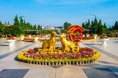 De Tuinpark van de Dalatbloem, Vietnam Royalty-vrije Stock Afbeelding