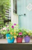 De tuinpotten van de zomer Stock Fotografie