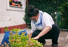 De tuinvrouw maakt Autumn Garden Work Royalty-vrije Stock Foto