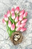 De tulp bloeit de decoratie van paaseierenpasen de Bloemenvlakte lag Royalty-vrije Stock Afbeeldingen